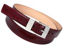 Belt accessory Stock Image