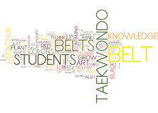 The Belt Colors Of Tae Kwon Do Text Background  Word Cloud Concept. THE BELT COLORS OF TAE KWON DO Text Background Word Cloud Concept Royalty Free Stock Photos