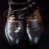 Belt and men's shoes closeup Stock Image
