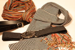 belts scarfs Arkivbild