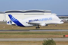 Beluga from Airbus Royalty Free Stock Photos