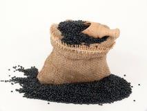 Beluga black lentils in a bag Stock Images