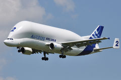 Beluga d'Airbus A300-600ST Images stock