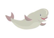 Beluga Whale Cartoon Flat Vector Illustration Stock Images