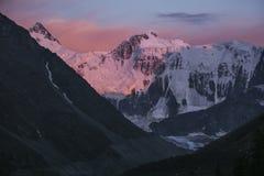 Beluha mountain at sunset. Altai, Russia Stock Image