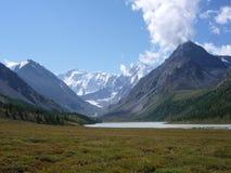 Belukha berg, Altai Arkivbilder