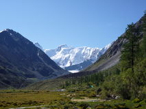 Belukha góra, Altai Fotografia Royalty Free