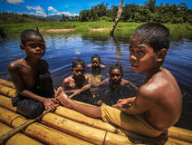 Belum royal indigène Images stock
