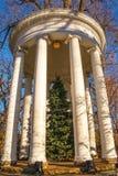 Belvédère classique de grand jardin avec l'arbre de Noël au centre et lumières ficelées autour des colonnes contre des branches d photographie stock libre de droits