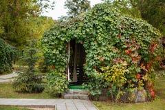 Belvédère d'automne couvert de quinquefolia la Virginie de Parthenocissus images stock