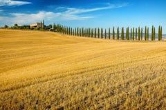 Belvédère de la Toscane photographie stock libre de droits