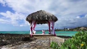Belvédère de mariage sur le rivage de récif d'océan clips vidéos