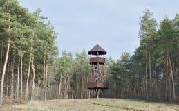 Belvédère en bois sur une colline dans la forêt image libre de droits