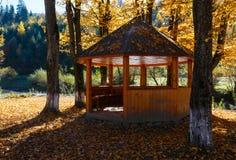 Belvédère en parc ensoleillé de hêtre de montagne carpathienne d'automne sur la rivière image stock