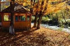 Belvédère en parc ensoleillé de hêtre de montagne carpathienne d'automne sur la rivière photos libres de droits