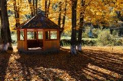 Belvédère en parc ensoleillé de hêtre de montagne carpathienne d'automne sur la rivière images stock