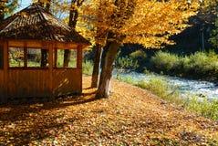 Belvédère en parc ensoleillé de hêtre de montagne carpathienne d'automne sur la rivière image libre de droits