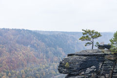 Belveder view in autumn Stock Photography