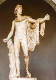 The Belvedere Apollo - statue in Vatican museum Royalty Free Stock Photos