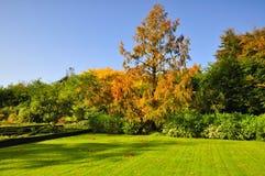 Belvedere Gardens Stock Photography
