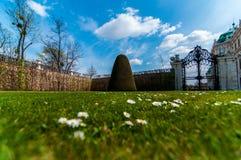 Belvedere tuin in Wien bij concours in Zuid-Florida Royalty-vrije Stock Afbeelding