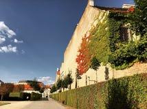 Belvedere, Viena Fotos de archivo libres de regalías