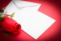 bemärk rose Royaltyfria Foton
