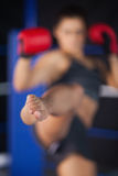 Bemale boxer performing an air kick Stock Images