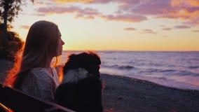 Bemanna och förfölja Den unga kvinnan med en australisk herde beundrar solnedgången över sjön eller havet De sitter sidan - förbi lager videofilmer
