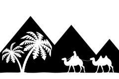 Bemannen Sie auf dem Kamel die Pyramiden. Stockfotografie