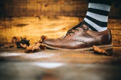 Bemannen Sie braunen Schuh der Mode auf hölzernem Hintergrund mit gestreiften Socken Stockfoto