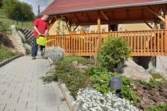 Bemannen Sie das Arbeiten im Garten, Sommertag Lizenzfreies Stockfoto