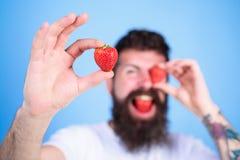 Bemannen Sie das bärtige Blinzeln mit der roten Beere, defocused Langer Bart des hübschen Hippies des Mannes essen Grifferdbeere  Stockfotos