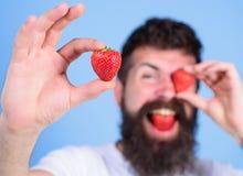 Bemannen Sie das bärtige Blinzeln mit der roten Beere, defocused Perfektes Erdbeerkonzept Betrachten Sie meine Beere Der glücklic Stockbilder