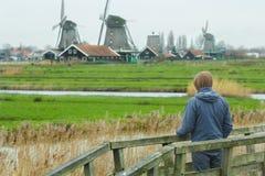 Bemannen Sie das Betrachten der ländlichen Landschaftsansicht mit traditionellen niederländischen Windmühlen und alten Gutshäuser Lizenzfreie Stockbilder