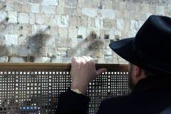 Bemannen Sie das Betrachten der westlichen Wand, Jerusalem Stockfotos