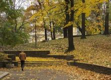 Bemannen Sie das Gehen über tote Blätter auf Park im Herbst in Sofia Stockfotografie