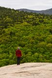 Bemannen Sie das Genießen von Unterlassungsbergen der schönen Ansicht des immergrünen Waldes stockfotos