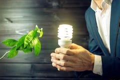 Bemannen Sie das Halten eines Glühens hell nahe dem grünen Sprösslingsbaum Lizenzfreie Stockfotografie
