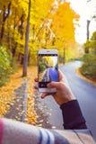 Bemannen Sie das Machen des Fotos des gelben Laubs im Wald im Herbst mit Telefon Stockfoto
