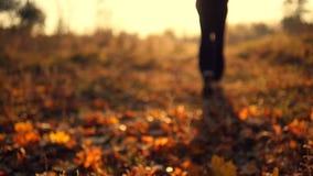 Bemannen Sie das Rütteln im Herbstpark, der auf trockene Blätter in der Zeitlupe tritt Männliche Füße, die an der Natur laufen Ke