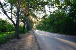 Bemannen Sie das Rütteln in der Baum-Tunnel-natürlichen Straße zur Sonnenuntergangzeit Stockfotos