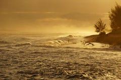 Bemannen Sie das Springen in Ozean lizenzfreie stockbilder