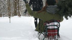 Bemannen Sie das Ziehen des Mädchens auf einem Schlitten am Schnee Antreiben in einen Schlitten stock video