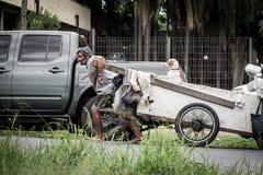 Bemannen Sie das Ziehen eines Warenkorbes mit einem Hund, Brasilien Stockfotos