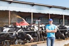 Bemannen Sie den Landwirt, der an Bauernhof mit Milchkühen arbeitet Lizenzfreie Stockfotografie