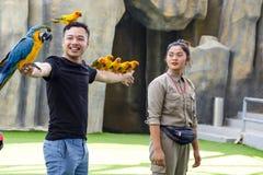 Bemannen Sie den Vogeltrainer mit dem Handeln des Trickpapageien auf Vogel ` s Show Stockfotografie