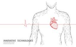 Bemannen Sie der Herzschläge 3d des Schattenbildes das gesunde Poly Medizinmodell niedrig Dreieck verbundener Punktglühen-Punkton lizenzfreie abbildung