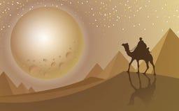 Bemannen Sie Fahrt ein Kamel, das zum Vollmond Wüste und Pyramide betrachtet lizenzfreie abbildung