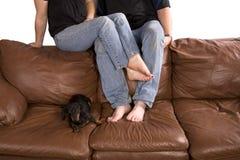 Bemannen Sie Frau und Hund ein zurück der Couch lizenzfreies stockfoto